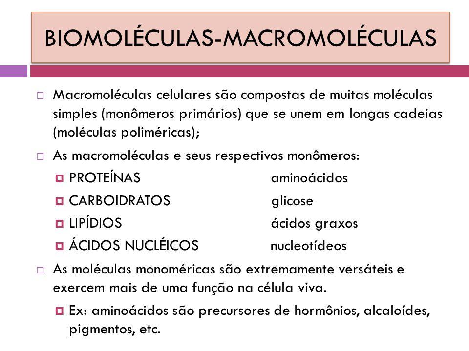 BIOMOLÉCULAS-MACROMOLÉCULAS