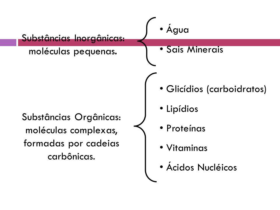Substâncias Inorgânicas: moléculas pequenas.