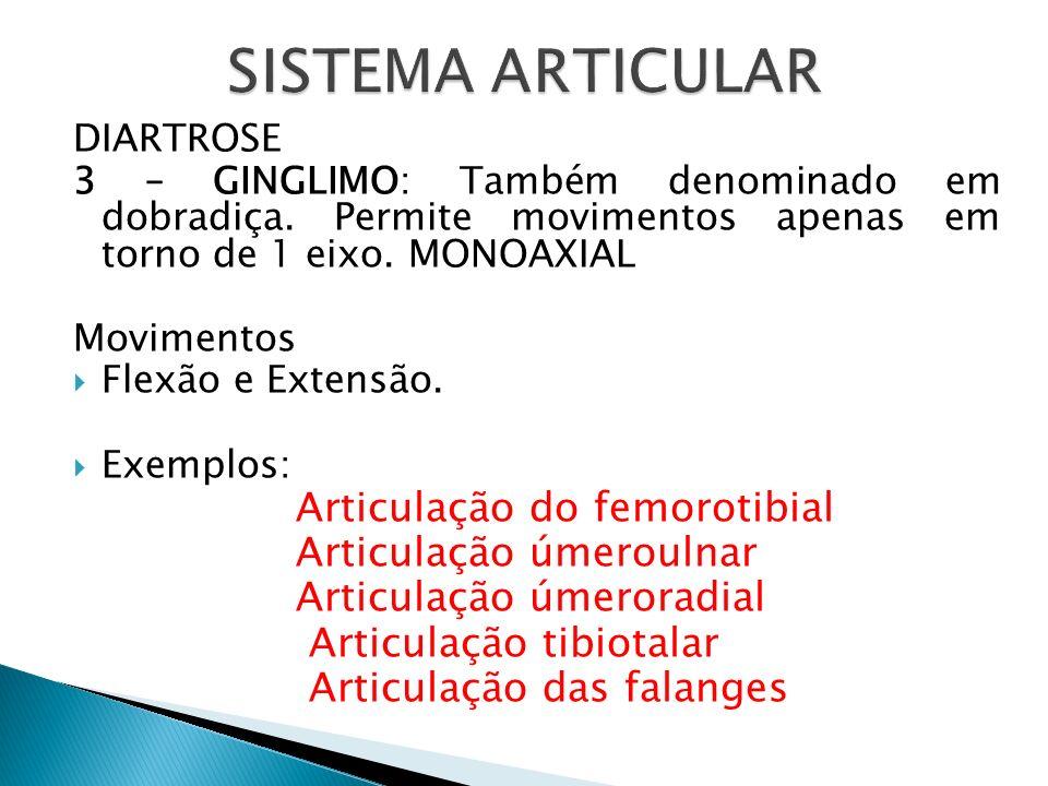 SISTEMA ARTICULAR Articulação do femorotibial Articulação úmeroulnar