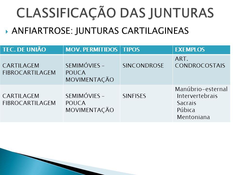 CLASSIFICAÇÃO DAS JUNTURAS
