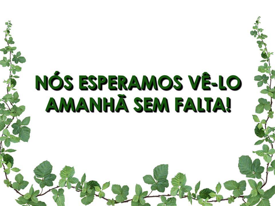 NÓS ESPERAMOS VÊ-LO AMANHÃ SEM FALTA!