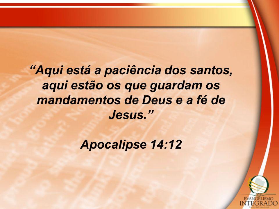 Aqui está a paciência dos santos, aqui estão os que guardam os mandamentos de Deus e a fé de Jesus.