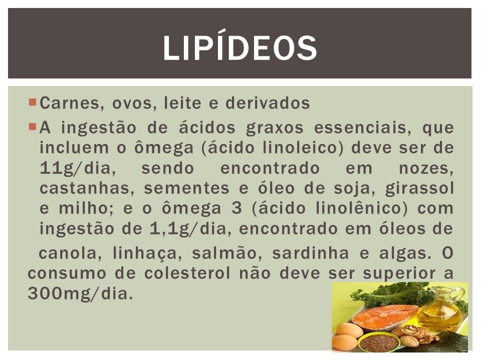 LIPÍDEOS Carnes, ovos, leite e derivados