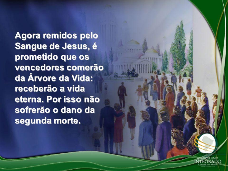 Agora remidos pelo Sangue de Jesus, é prometido que os vencedores comerão da Árvore da Vida: receberão a vida eterna.