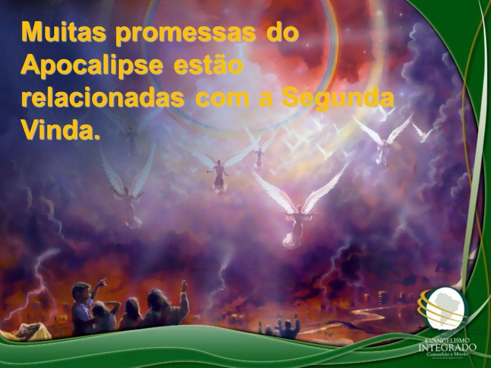Muitas promessas do Apocalipse estão relacionadas com a Segunda Vinda.