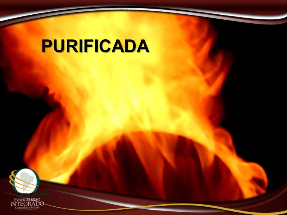 PURIFICADA