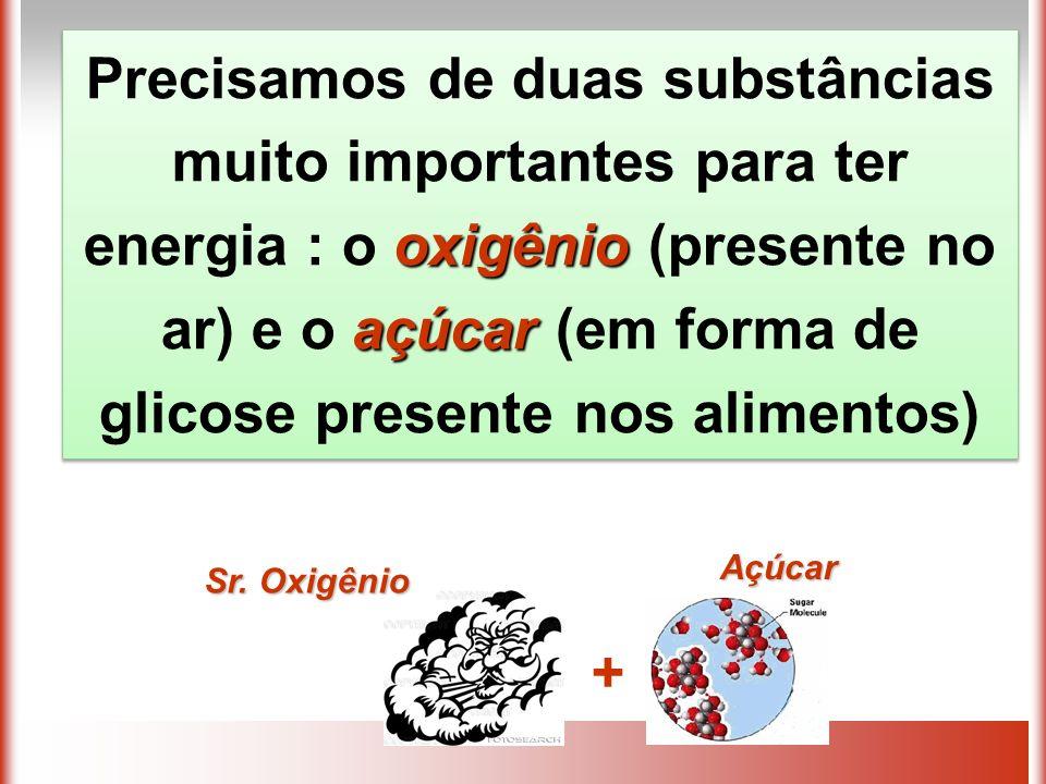 Precisamos de duas substâncias muito importantes para ter energia : o oxigênio (presente no ar) e o açúcar (em forma de glicose presente nos alimentos)