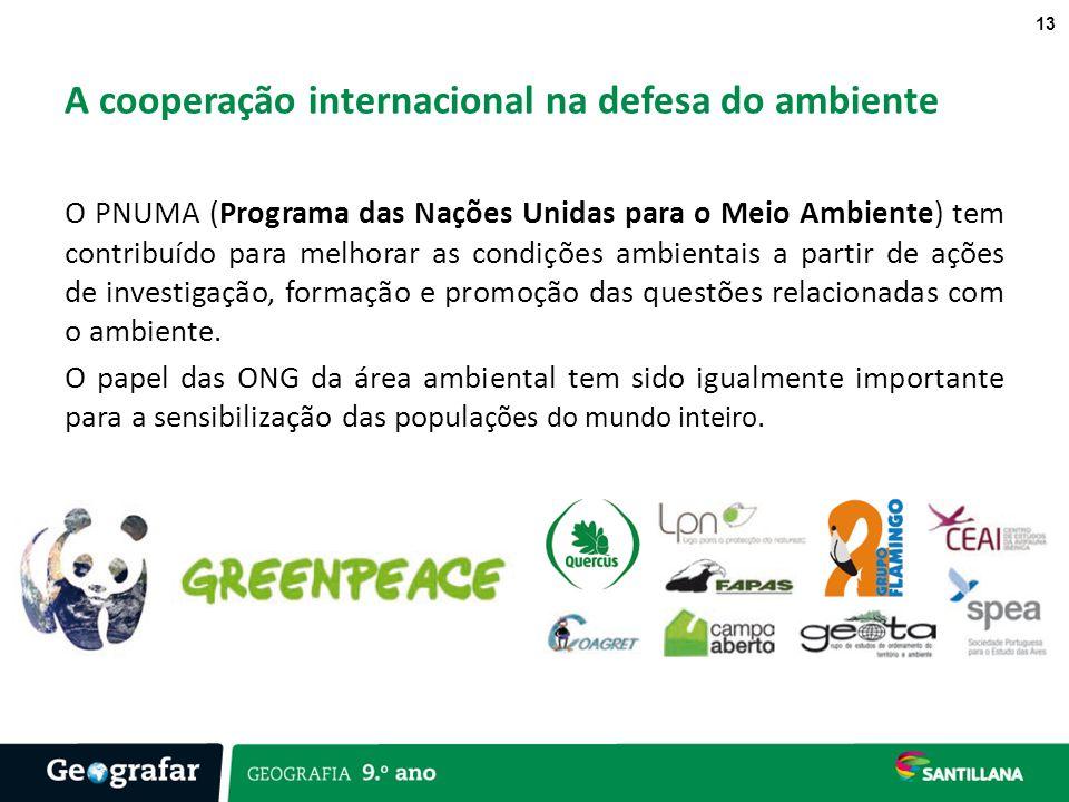 A cooperação internacional na defesa do ambiente
