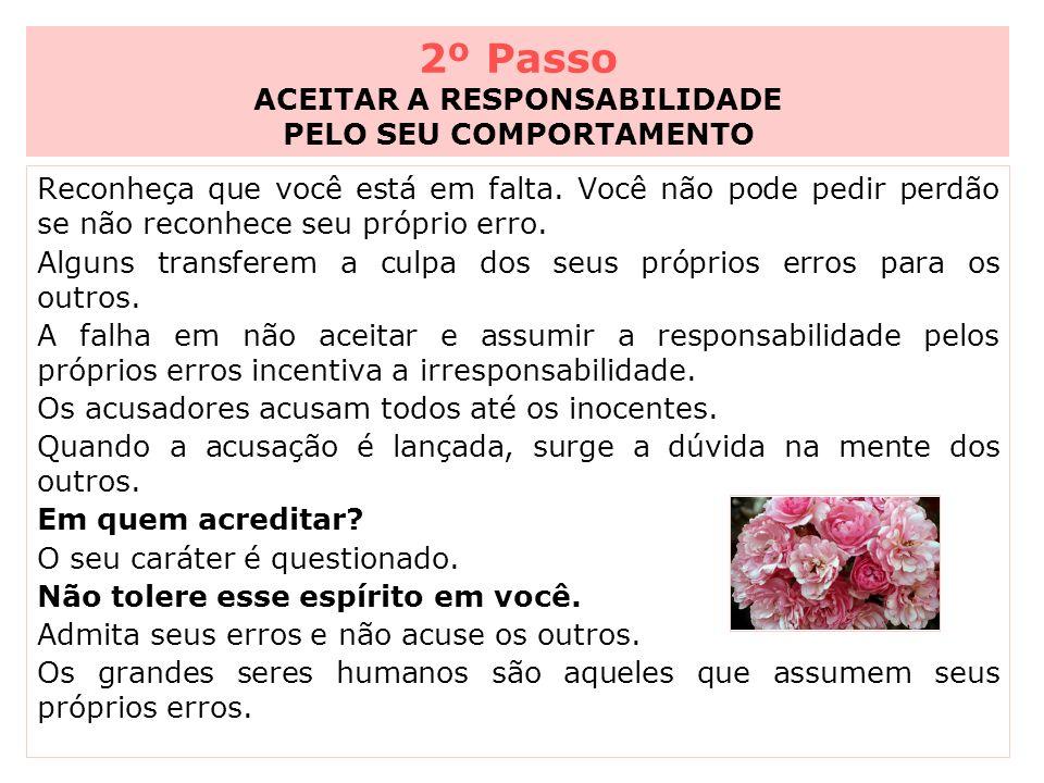 2º Passo ACEITAR A RESPONSABILIDADE PELO SEU COMPORTAMENTO