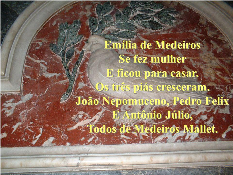 João Nepomuceno, Pedro Felix Todos de Medeiros Mallet.