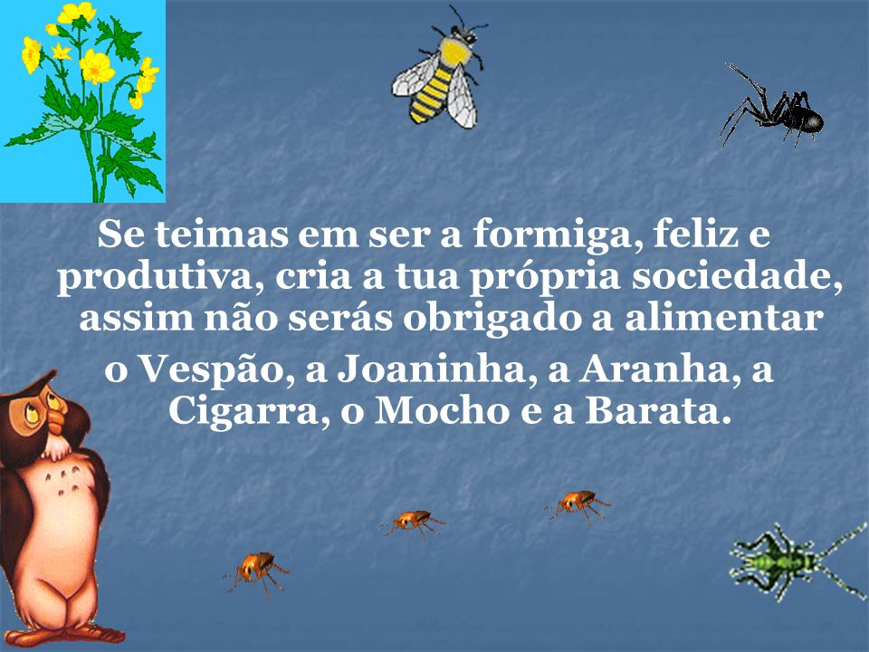 o Vespão, a Joaninha, a Aranha, a Cigarra, o Mocho e a Barata.