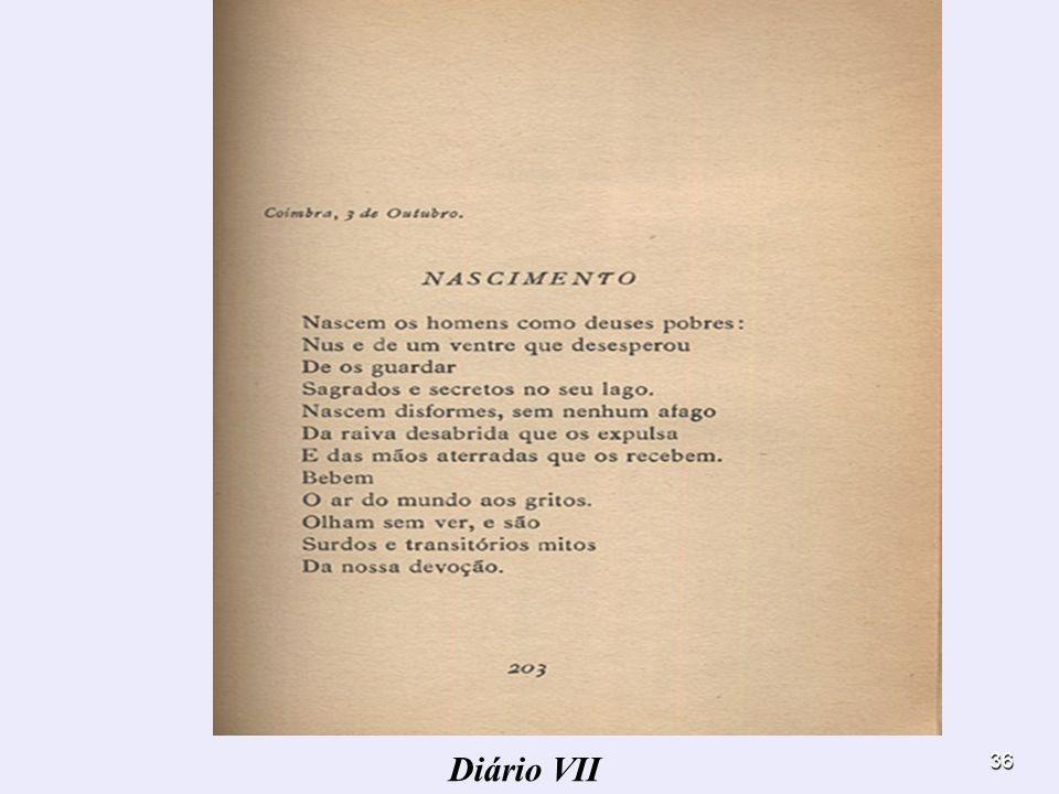 Diário VII