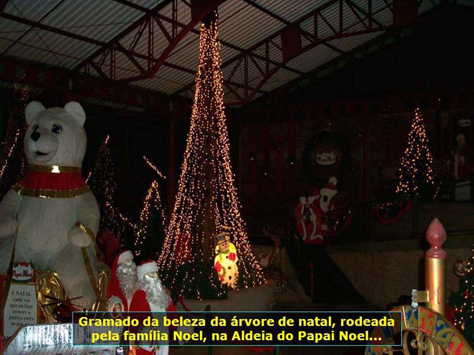 Gramado da beleza da árvore de natal, rodeada pela família Noel, na Aldeia do Papai Noel...