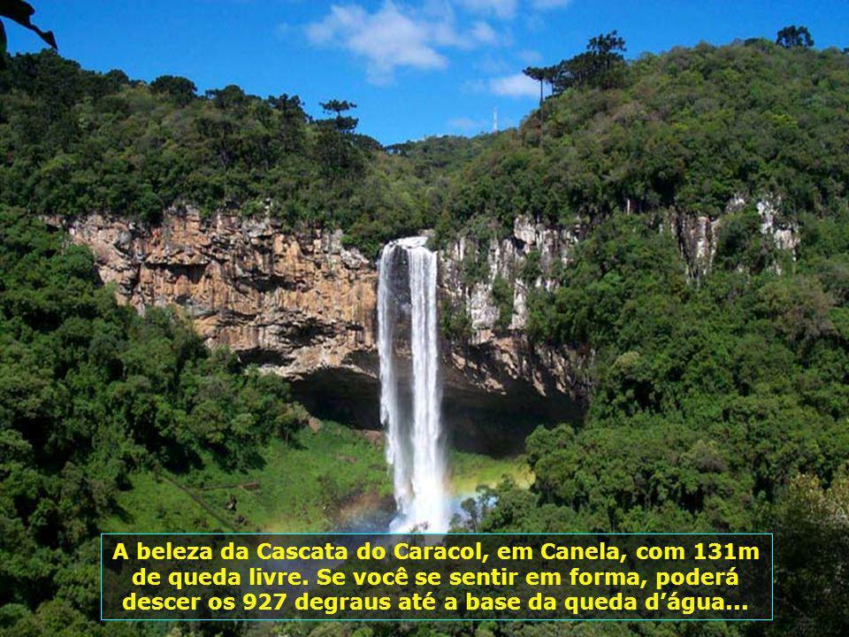 A beleza da Cascata do Caracol, em Canela, com 131m de queda livre