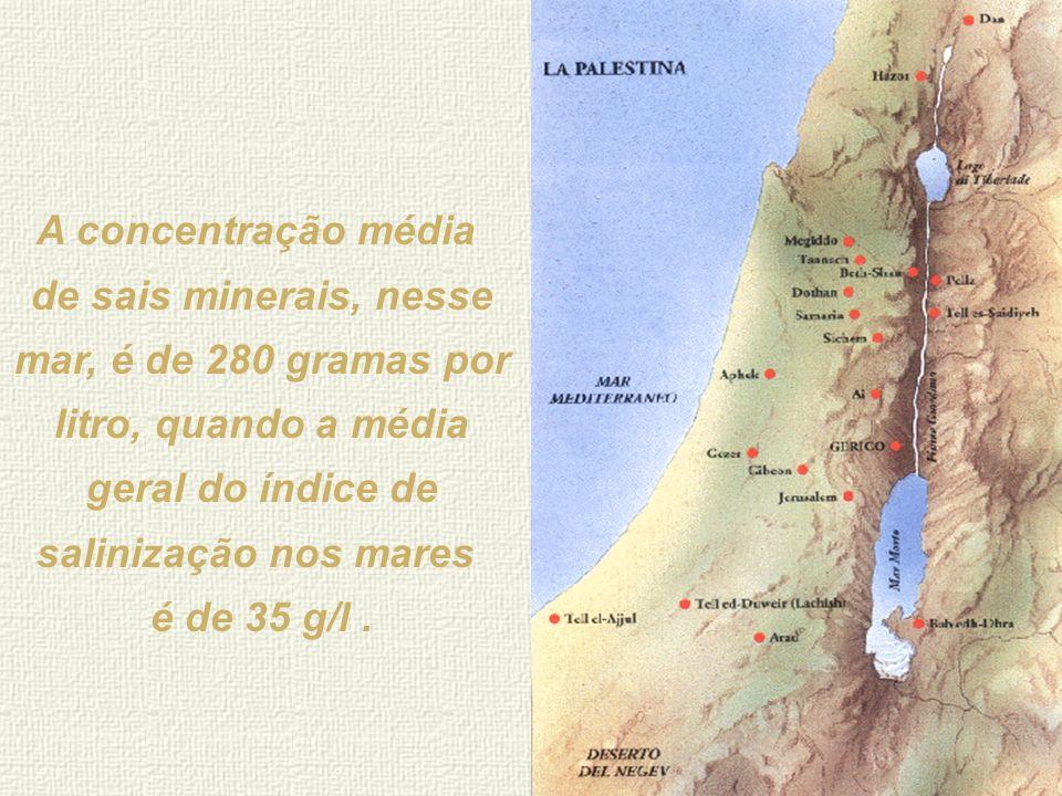 A concentração média de sais minerais, nesse mar, é de 280 gramas por litro, quando a média geral do índice de salinização nos mares.
