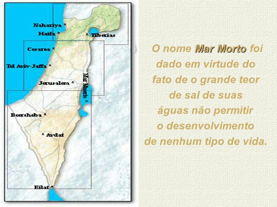 O nome Mar Morto foi dado em virtude do