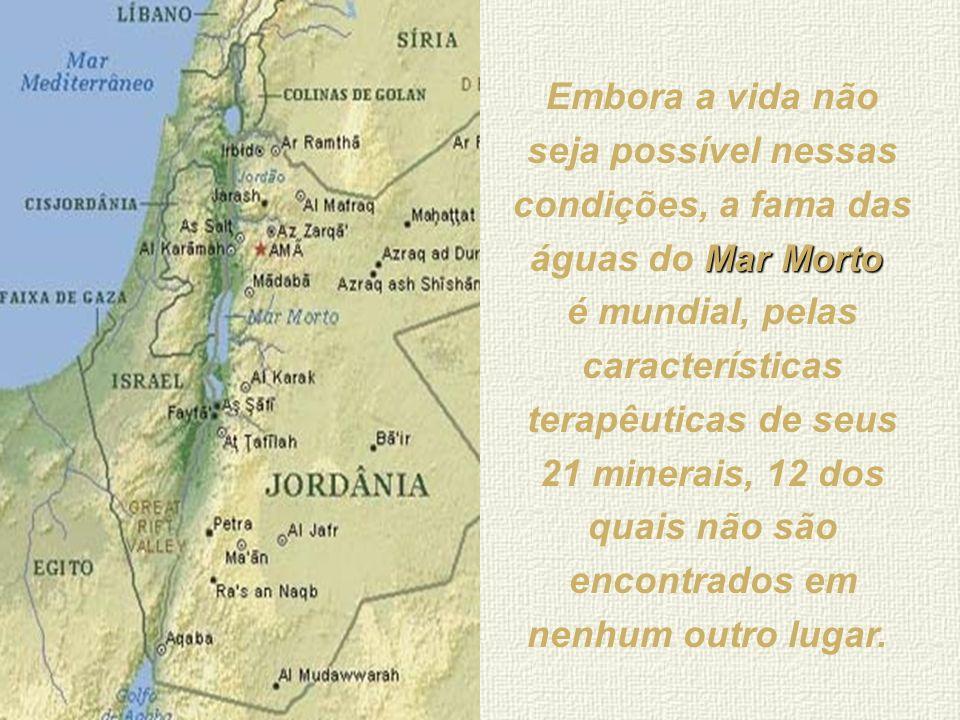 Embora a vida não seja possível nessas condições, a fama das águas do Mar Morto