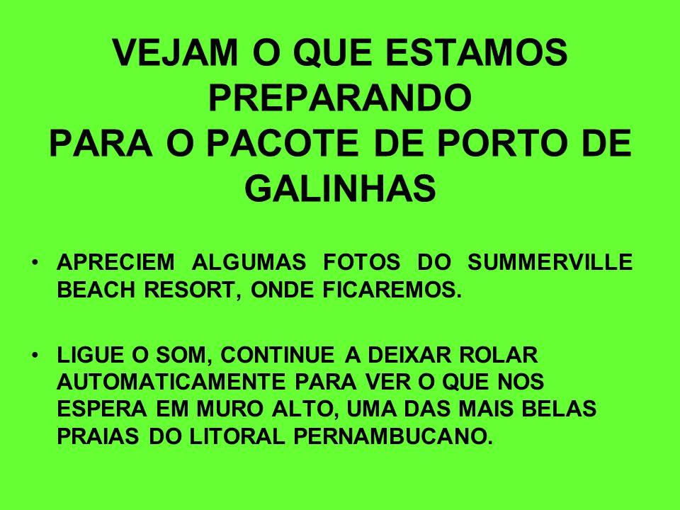 VEJAM O QUE ESTAMOS PREPARANDO PARA O PACOTE DE PORTO DE GALINHAS