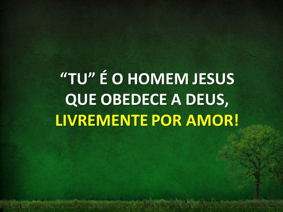 TU É O HOMEM JESUS QUE OBEDECE A DEUS, LIVREMENTE POR AMOR!