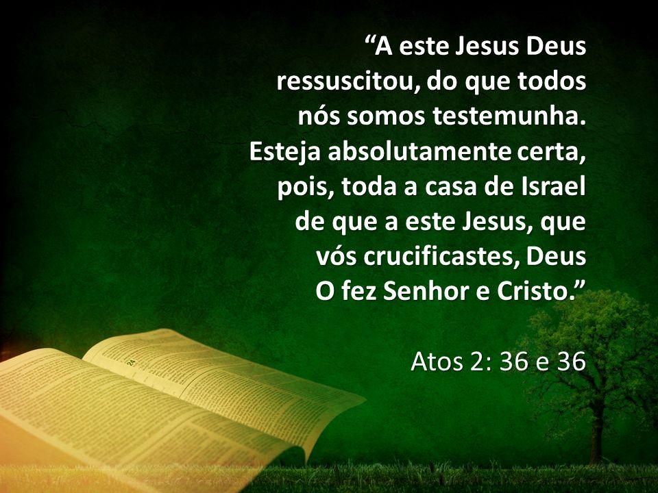 A este Jesus Deus ressuscitou, do que todos nós somos testemunha