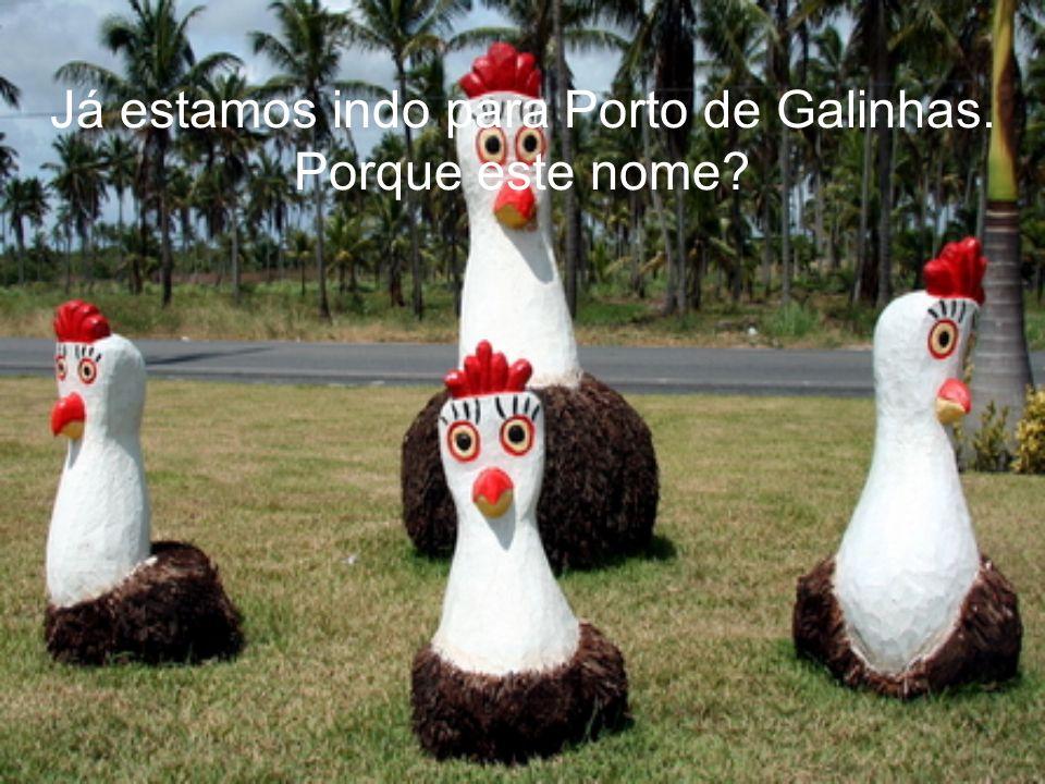 Já estamos indo para Porto de Galinhas.