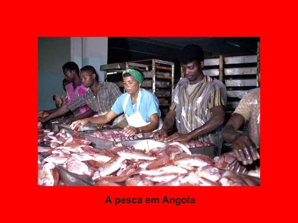 A pesca em Angola