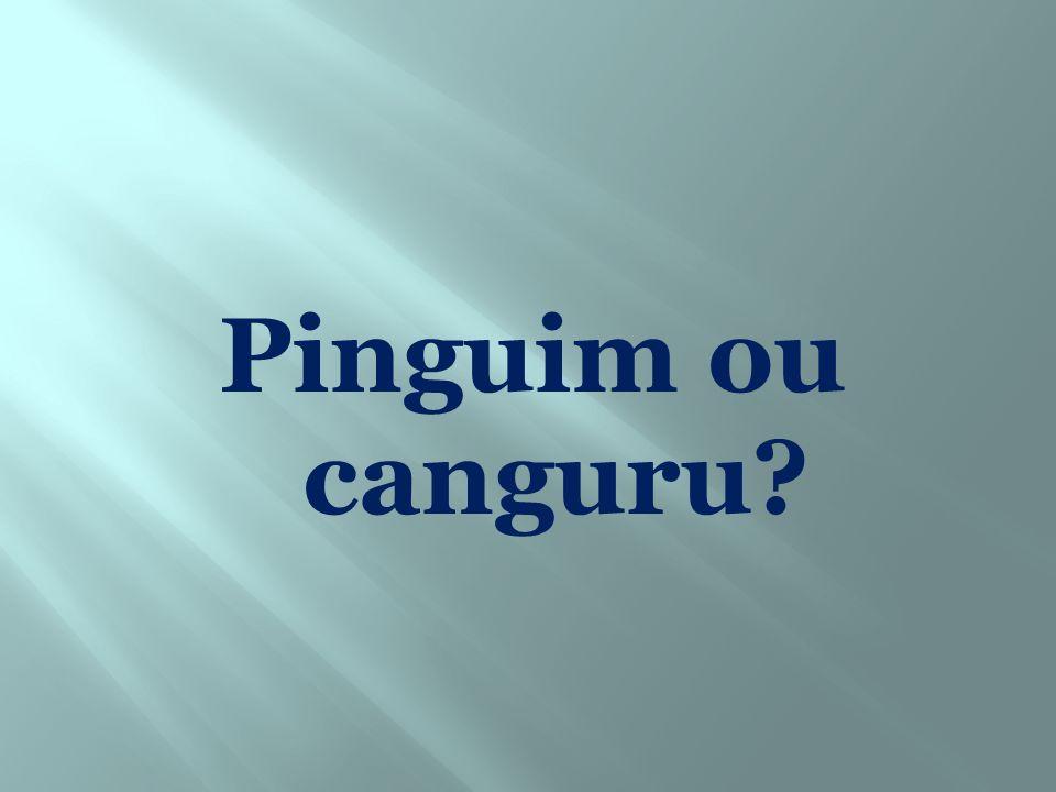 Pinguim ou canguru