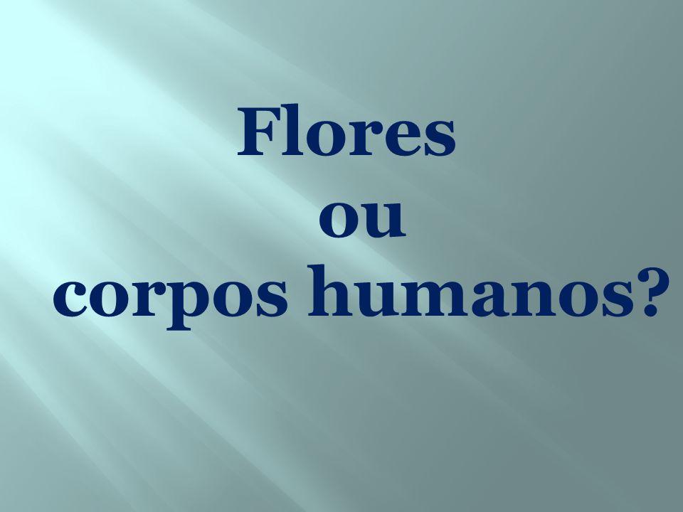 Flores ou corpos humanos