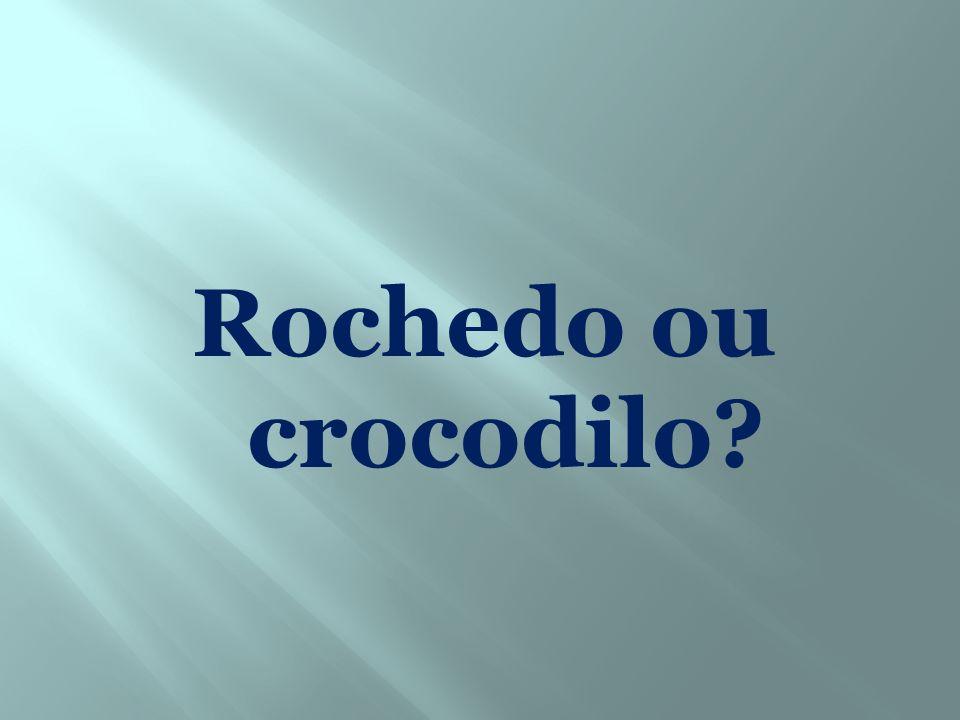 Rochedo ou crocodilo