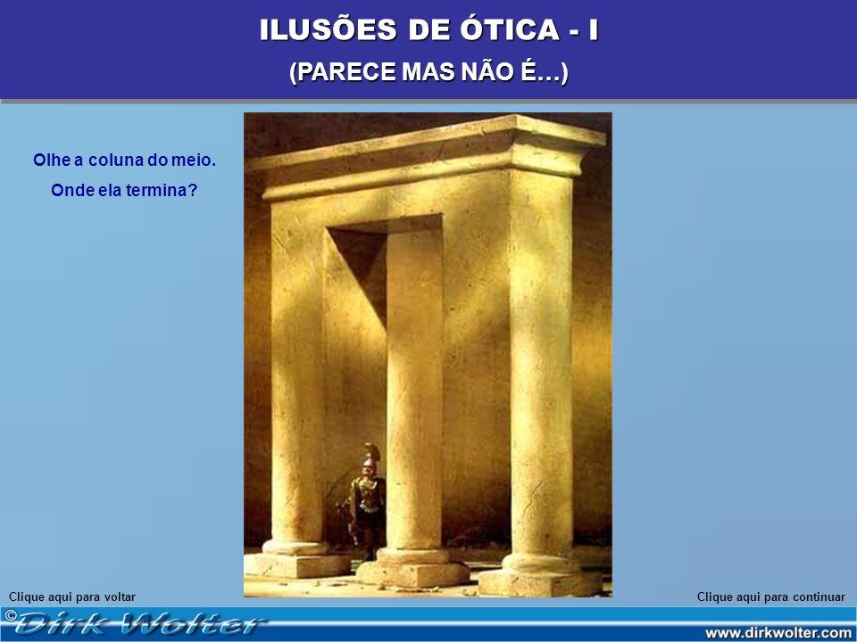 ILUSÕES DE ÓTICA - I (PARECE MAS NÃO É…) Olhe a coluna do meio.
