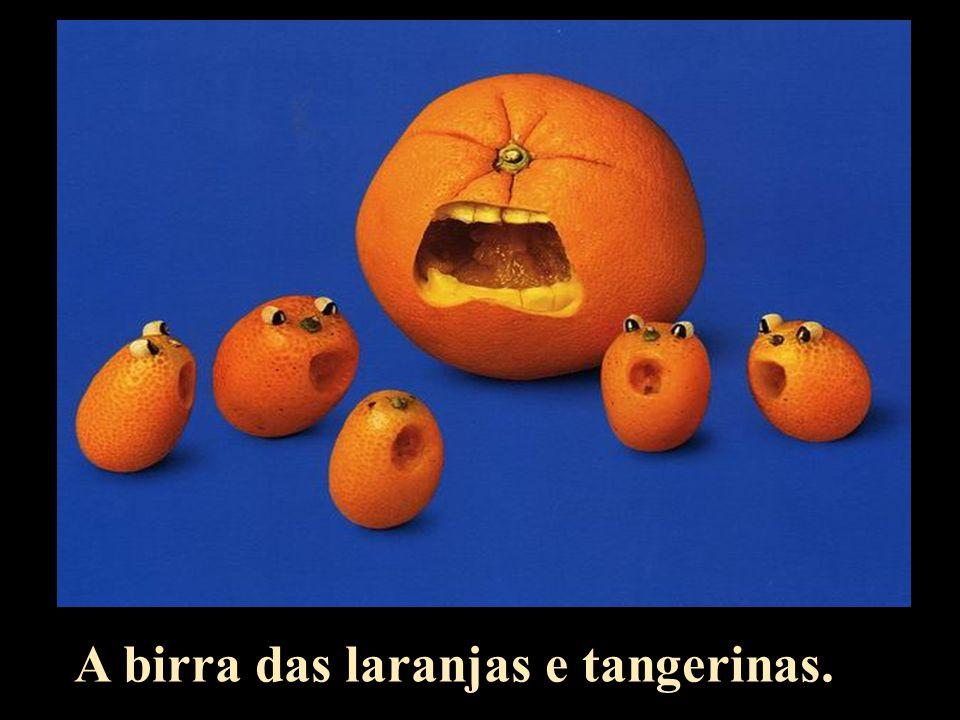 A birra das laranjas e tangerinas.