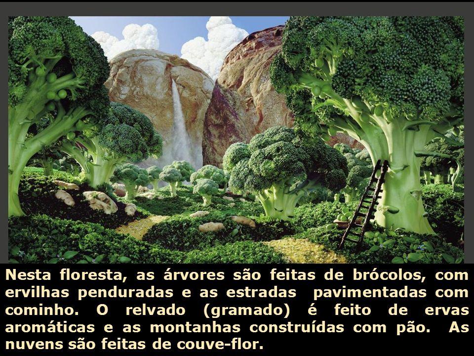 Nesta floresta, as árvores são feitas de brócolos, com ervilhas penduradas e as estradas pavimentadas com cominho.