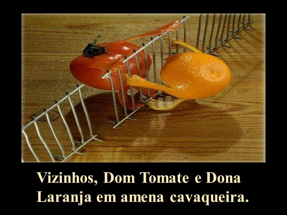 Vizinhos, Dom Tomate e Dona Laranja em amena cavaqueira.