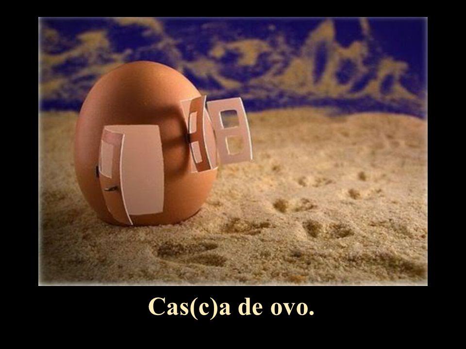 Cas(c)a de ovo.