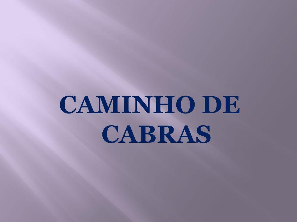 CAMINHO DE CABRAS