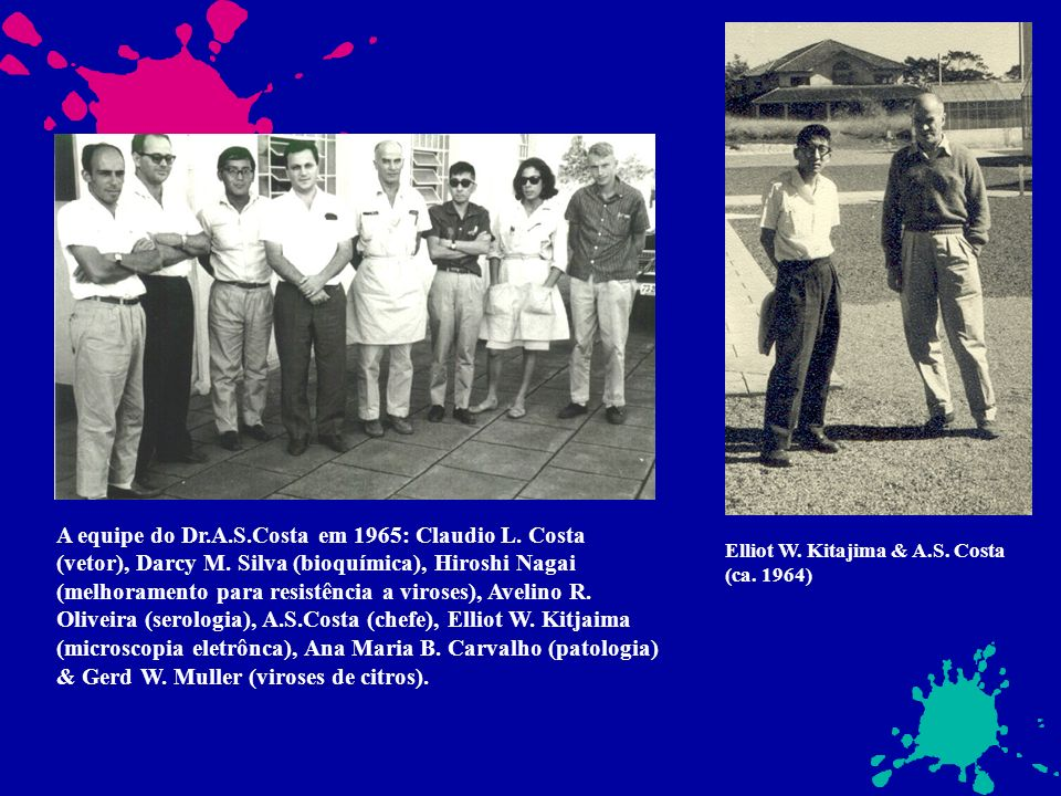 A equipe do Dr. A. S. Costa em 1965: Claudio L. Costa (vetor), Darcy M