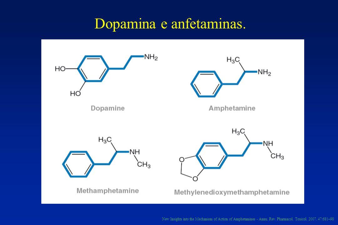Dopamina e anfetaminas.