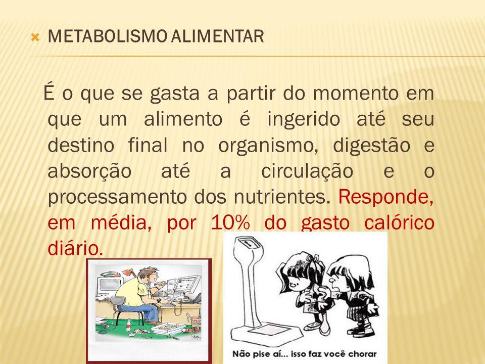 METABOLISMO ALIMENTAR