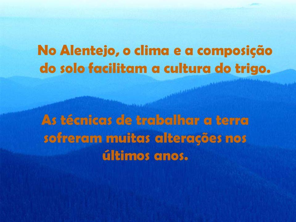 No Alentejo, o clima e a composição do solo facilitam a cultura do trigo.