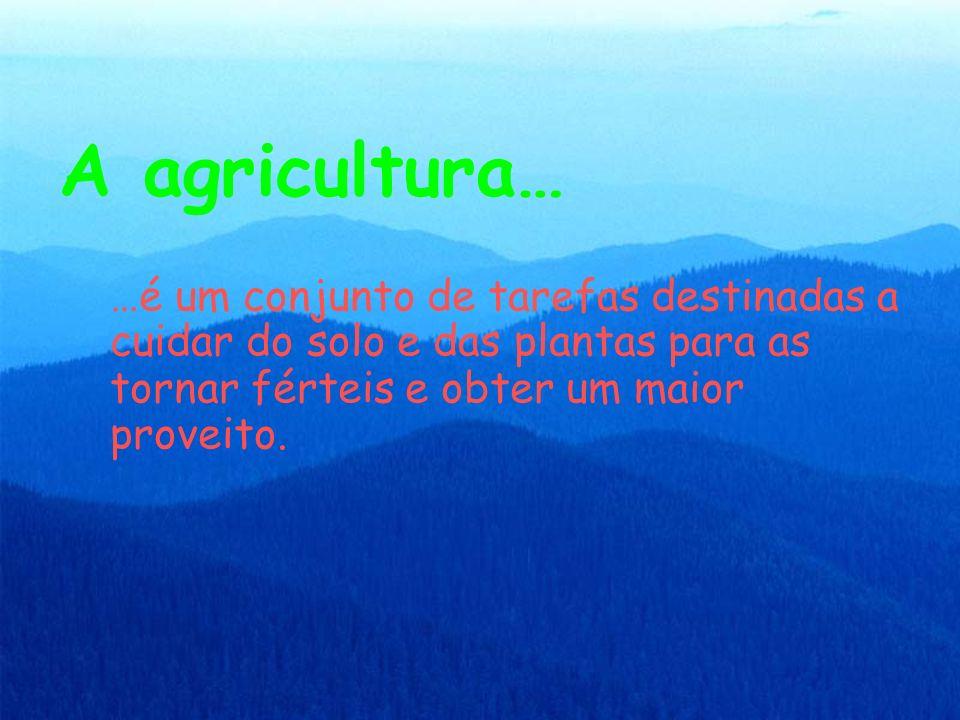 A agricultura……é um conjunto de tarefas destinadas a cuidar do solo e das plantas para as tornar férteis e obter um maior proveito.
