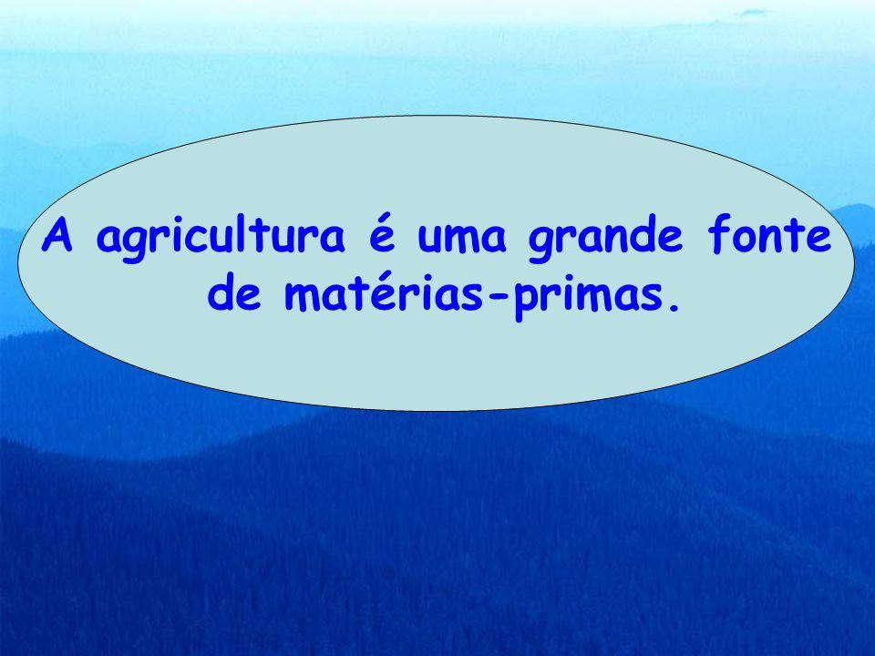 A agricultura é uma grande fonte