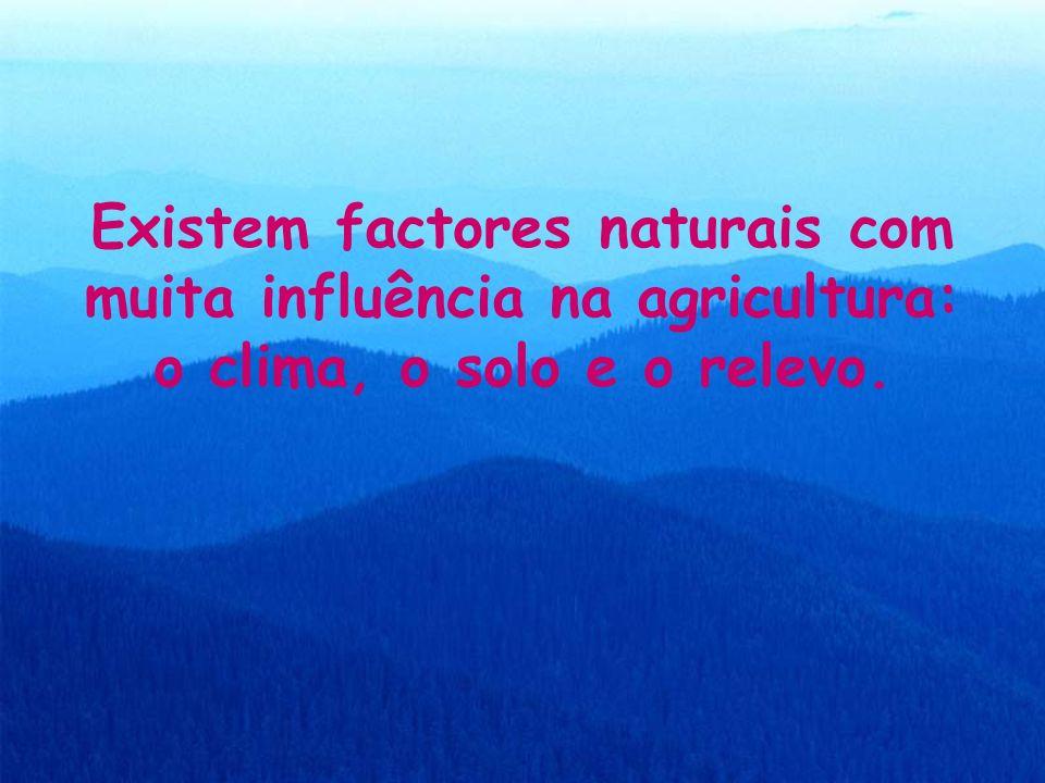 Existem factores naturais com muita influência na agricultura: o clima, o solo e o relevo.