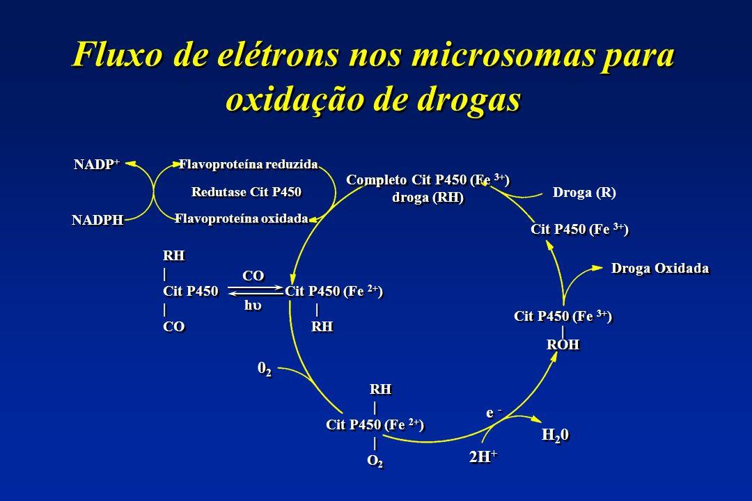 Fluxo de elétrons nos microsomas para oxidação de drogas