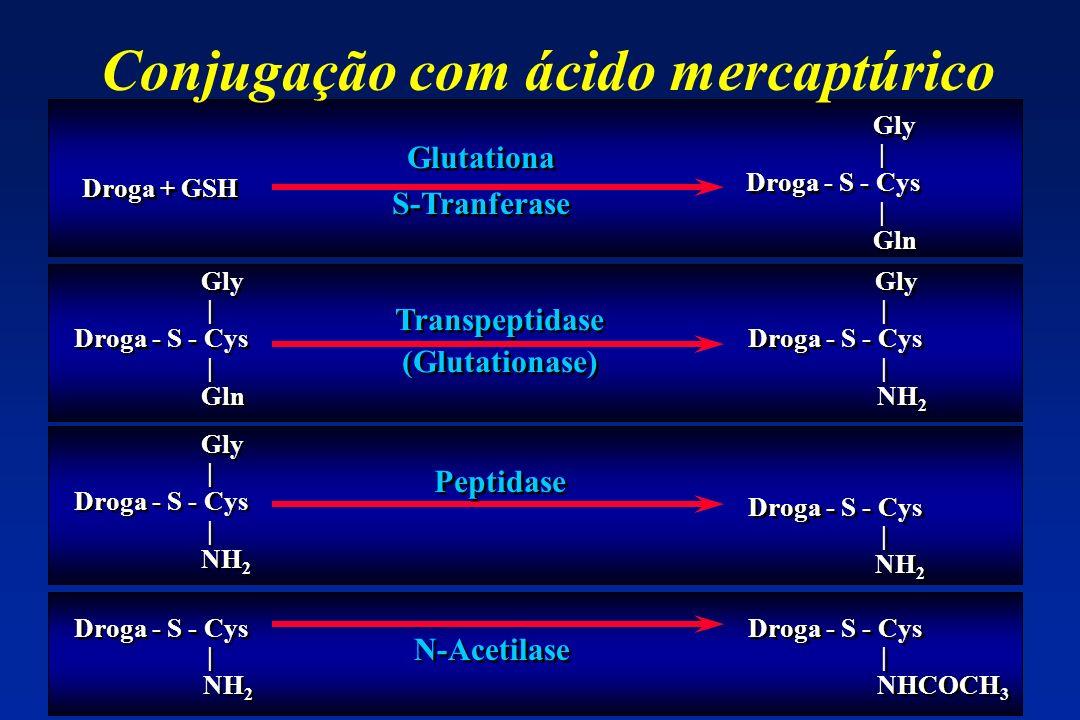 Conjugação com ácido mercaptúrico