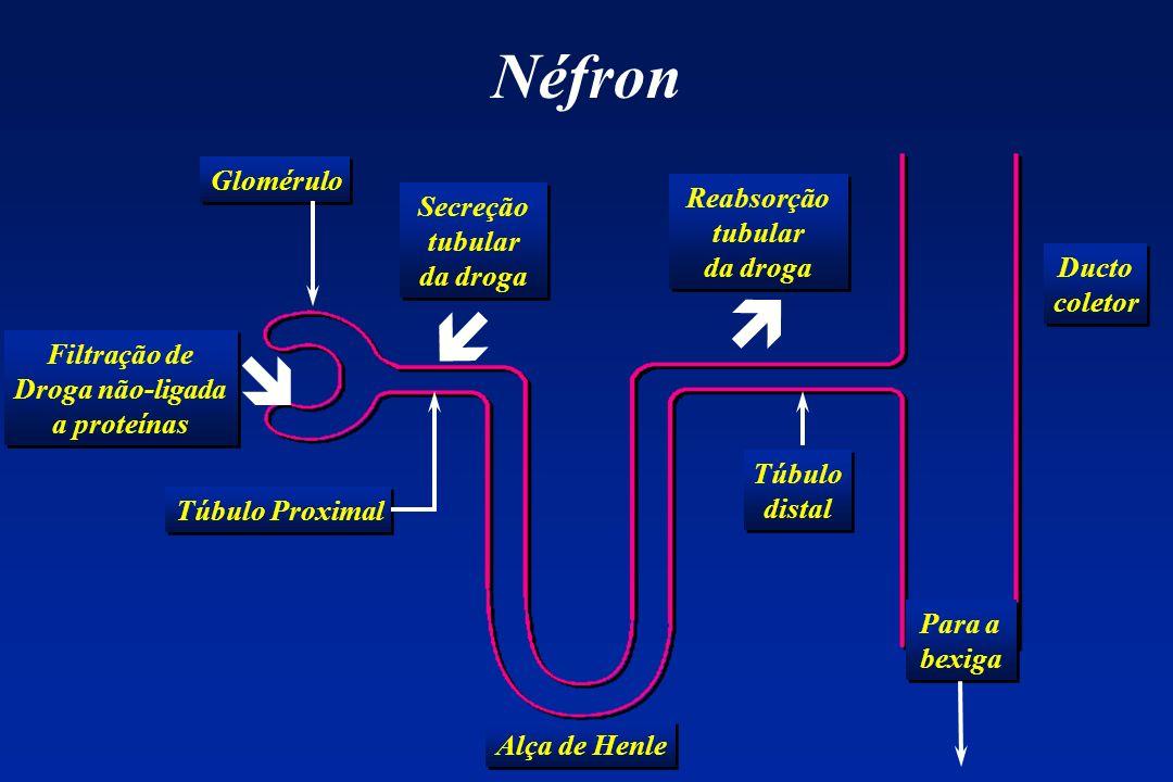 Droga não-ligada a proteínas