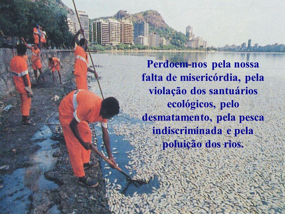 Perdoem-nos pela nossa falta de misericórdia, pela violação dos santuários ecológicos, pelo desmatamento, pela pesca indiscriminada e pela poluição dos rios.