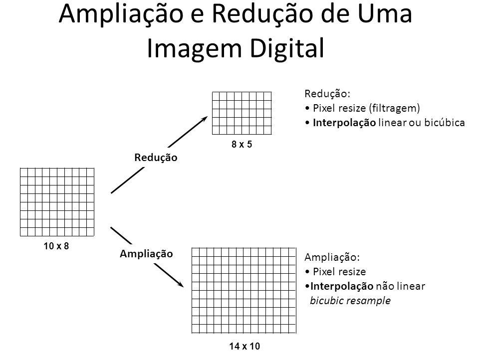 Ampliação e Redução de Uma Imagem Digital
