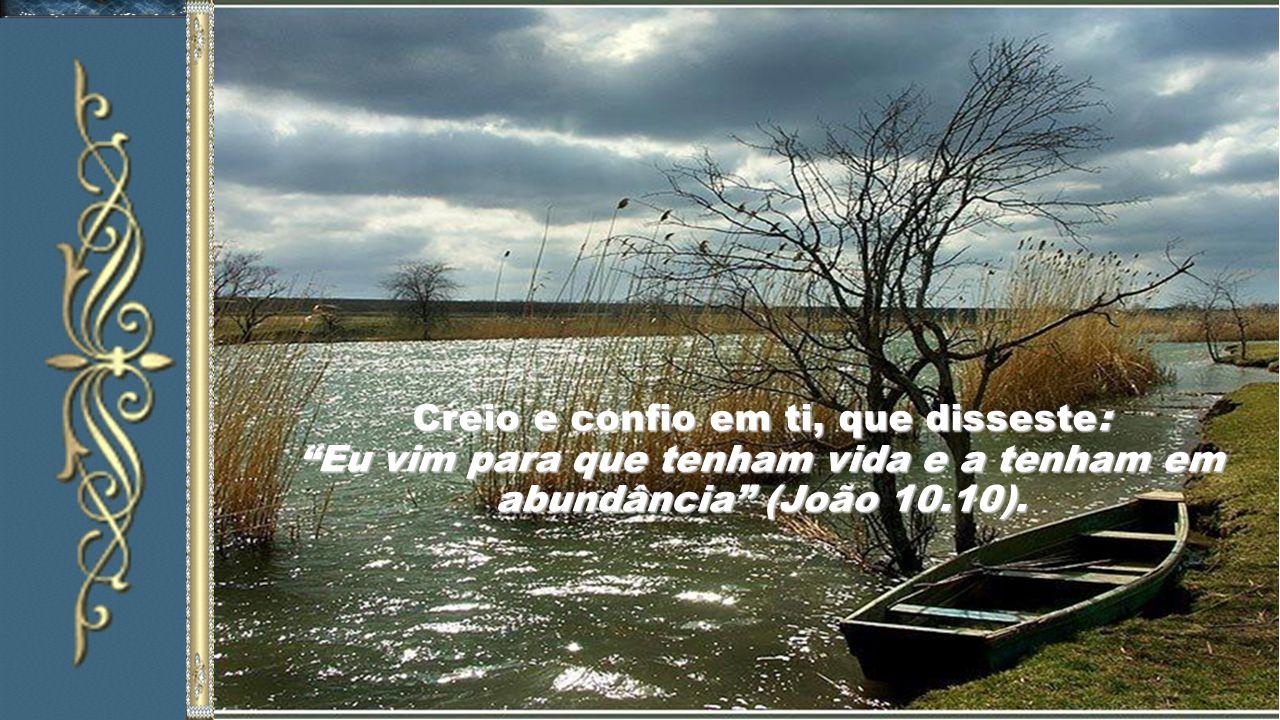 Creio e confio em ti, que disseste: Eu vim para que tenham vida e a tenham em abundância (João 10.10).