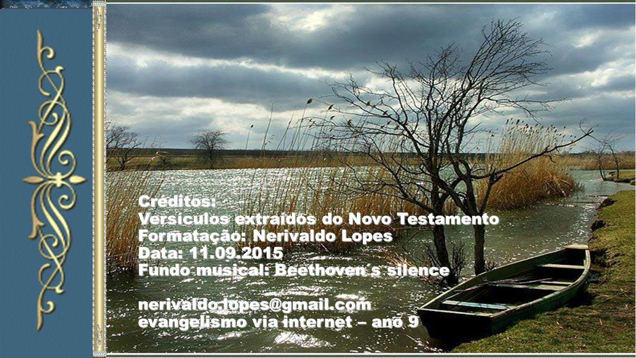Créditos: Versículos extraídos do Novo Testamento Formatação: Nerivaldo Lopes Data: 11.09.2015 Fundo musical: Beethoven´s silence nerivaldo.lopes@gmail.com evangelismo via internet – ano 9
