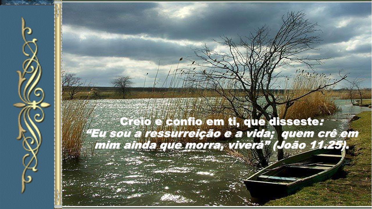 Creio e confio em ti, que disseste: Eu sou a ressurreição e a vida; quem crê em mim ainda que morra, viverá (João 11.25).